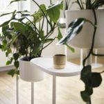 Pflanzengefäß Skandiform