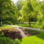 Stadtpark Beet