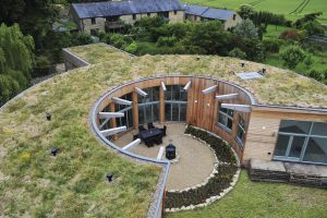 Gebäudebegrünung -  mit fachgerechter Planung ein nachhaltiger Blickfang
