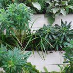 Mehr Grün für die urbanen Zentren auch durch vertikale Begrünung.