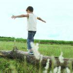 Innovativ, dekorativ und ökologisch: Pfleiderer