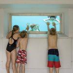Das Unterwasserfenster ermöglicht den Badegästen, das Rutschenspektakel aus einer ungewöhnlichen Perspektive zu beobachten.