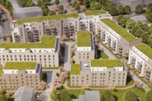 Dachaufbau und Dachbegrünung Noltemeyer Höfe