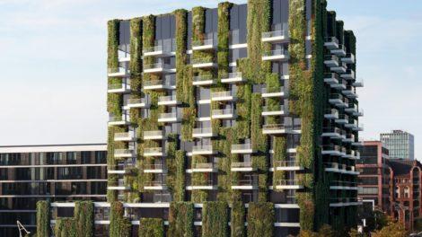 Fassadenbegrünung Schüco AF UDC 80 Green Facade