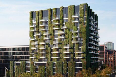 Urbane Fassadenbegrünung für nachhaltige Städte