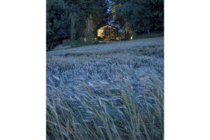 Villa casale monferrato Außenaufnahme
